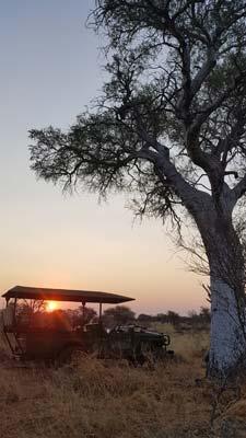 Harry Claassens Safaris Sunset